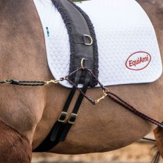 How the EquiAmi can help with the effective rehabilitation of horses