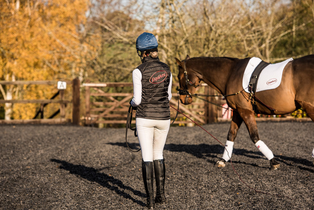 How to improve your lunging technique and improving control with long-reining