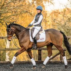 All about… the EquiAmi Riding Aid
